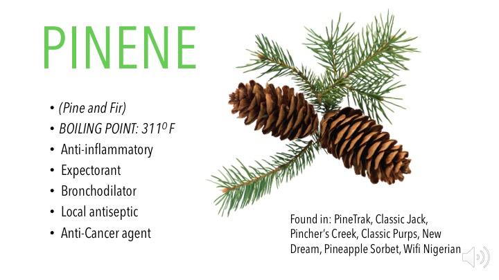 Pinene – Pass The Jay